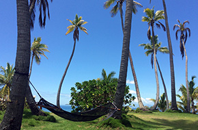 Relax under the palm trees in Fiji