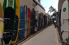 Ready to surf - Hawaiian island Oahu, vacation in Honolulu