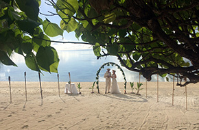 Beach wedding - Hawaii, Fiji or Cook Islands